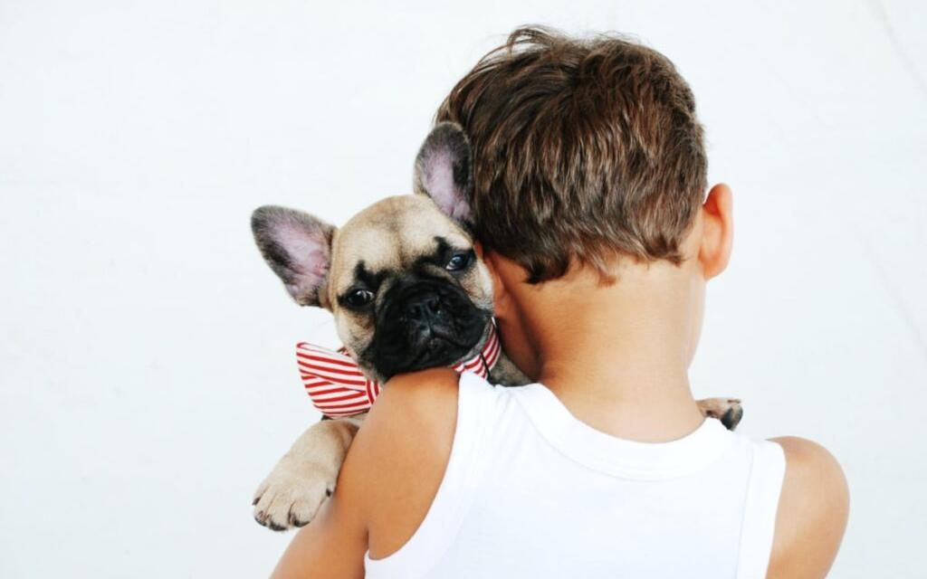 Sådan får du råd til at være kæledyrsejer