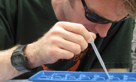 Hvad skal du give i gave til den nyuddannede biolog?