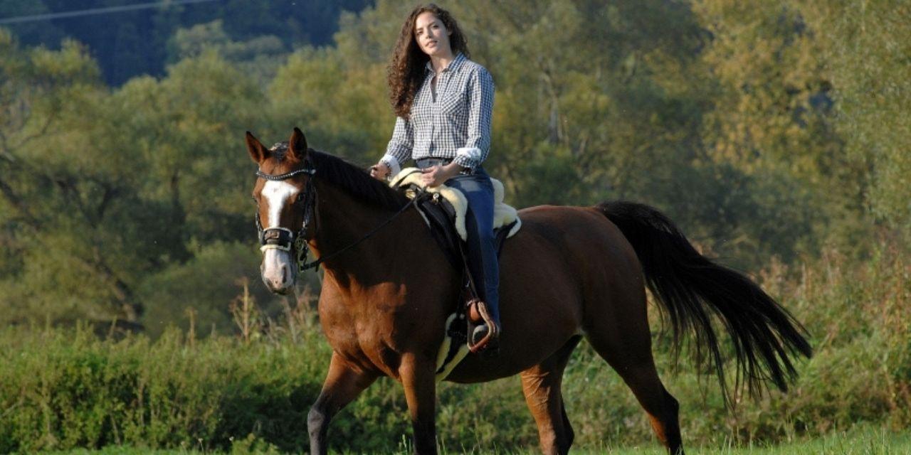Lammeskindssadel – Kvalitet til dig og din hest